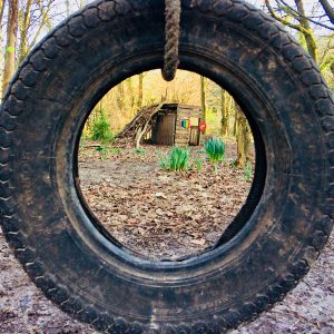 view through car tyre in the woods